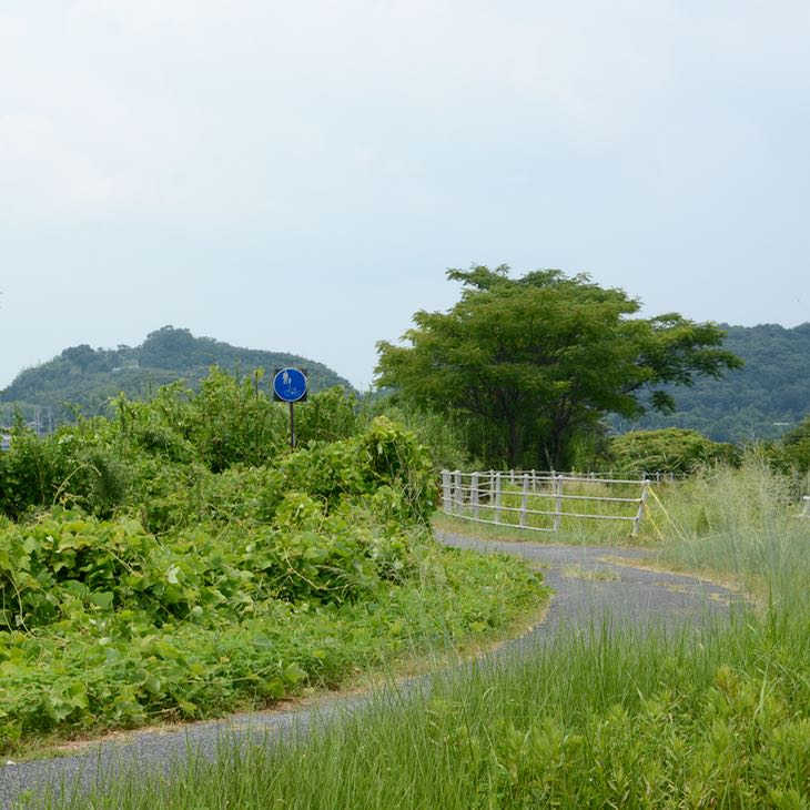 Kibi plain cycle path