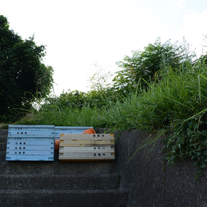 Fruit crates Kurashiki Japan