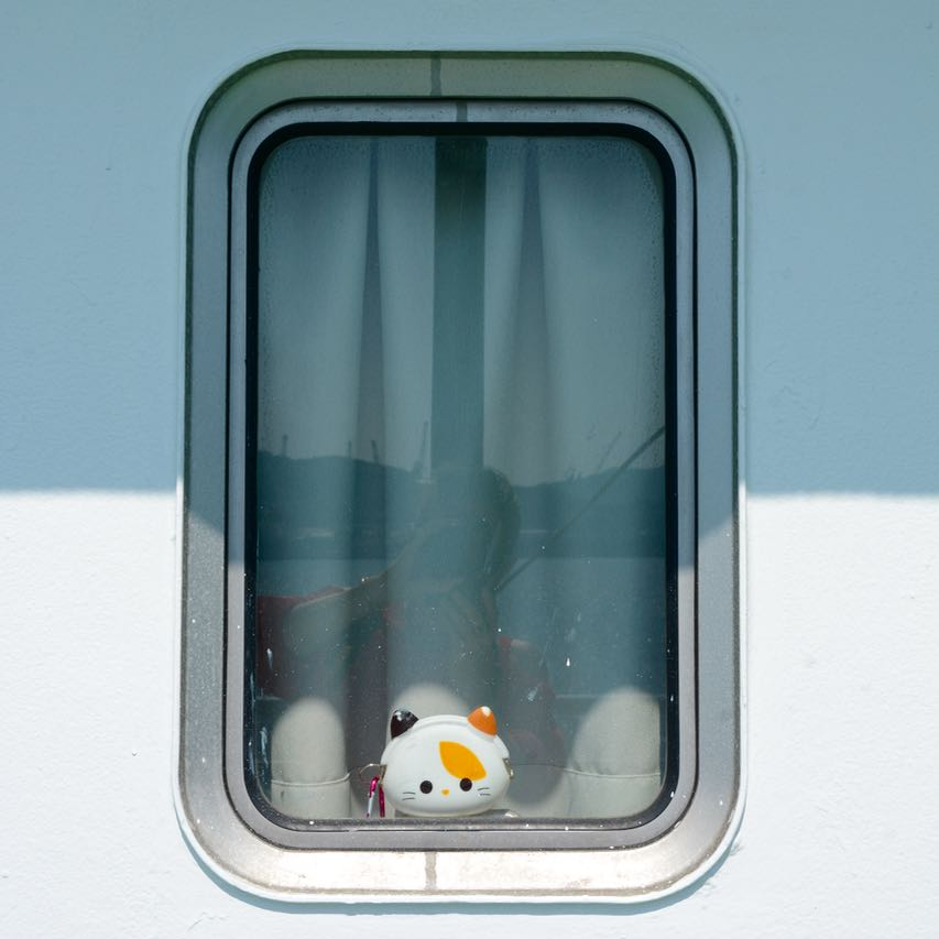 naoshima japan ferry blind passenger cat