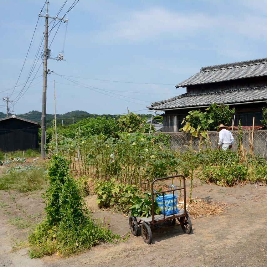 teshima ieura setouchi tirennale local farmer