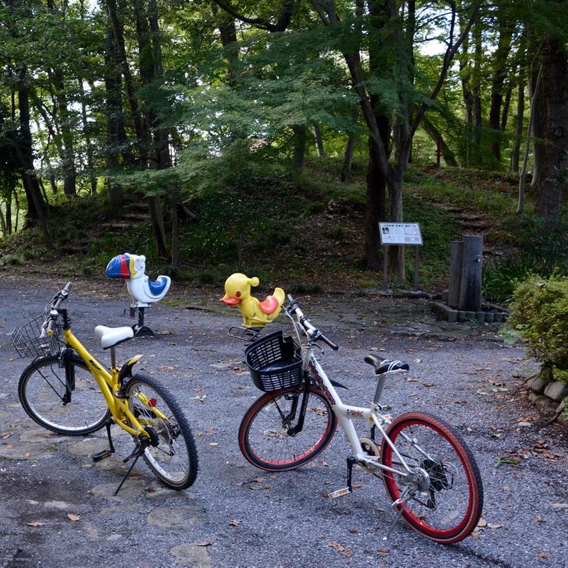 tama river cycling swings