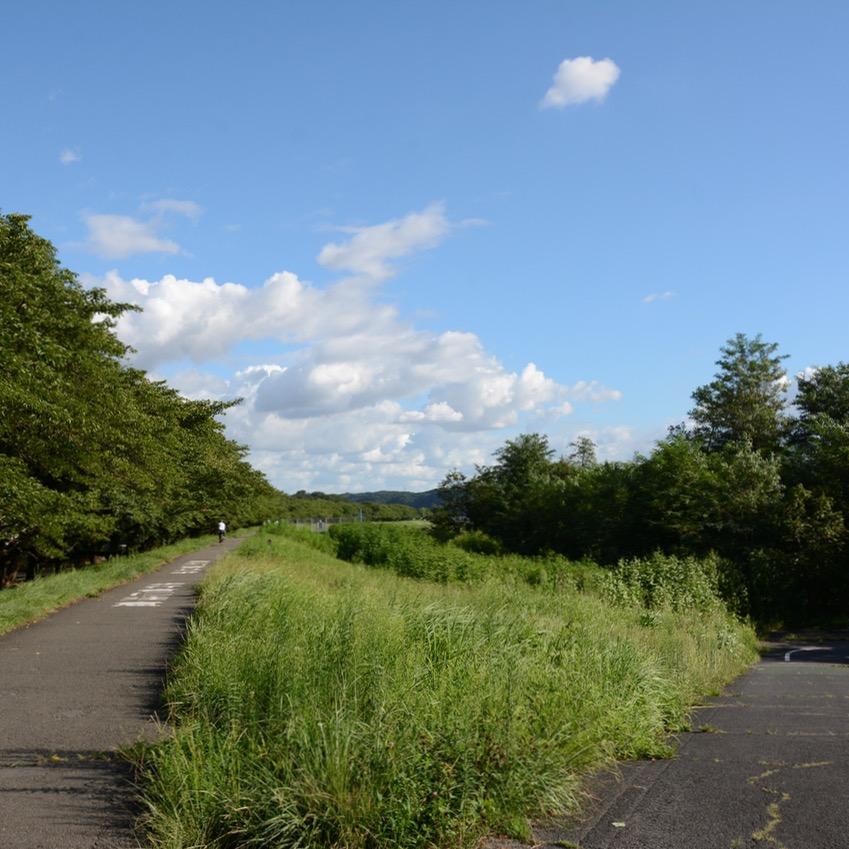 tama river cycling path