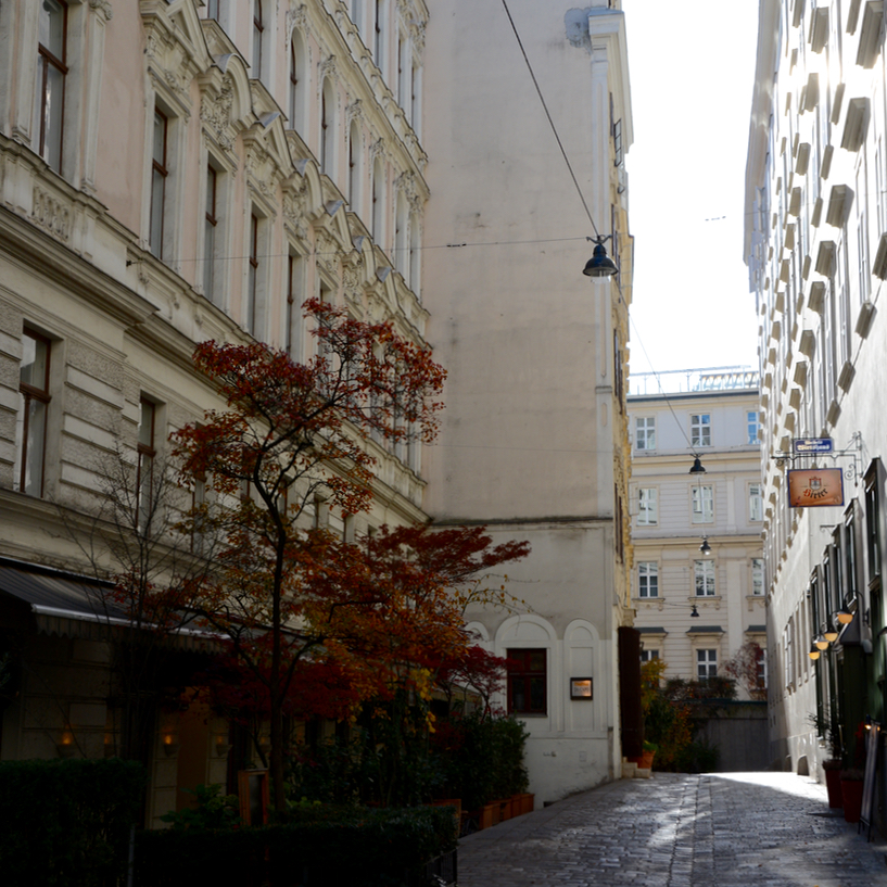 Vienna Wien Austria with children kids alleys