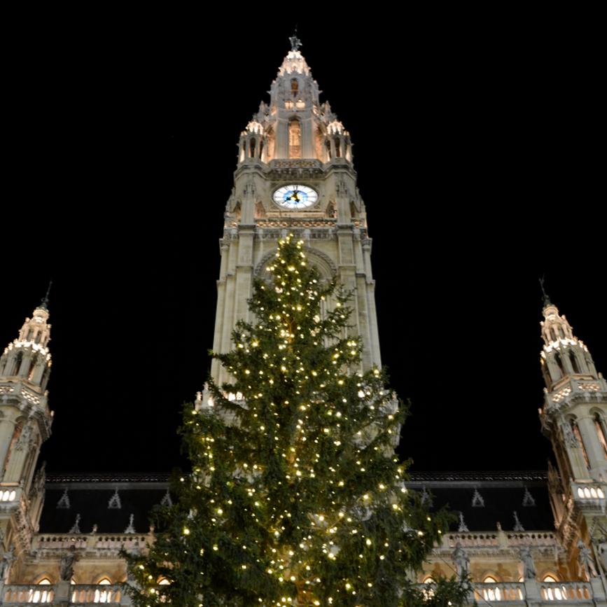 Vienna Wien Austria with children kids christmas market rathaus