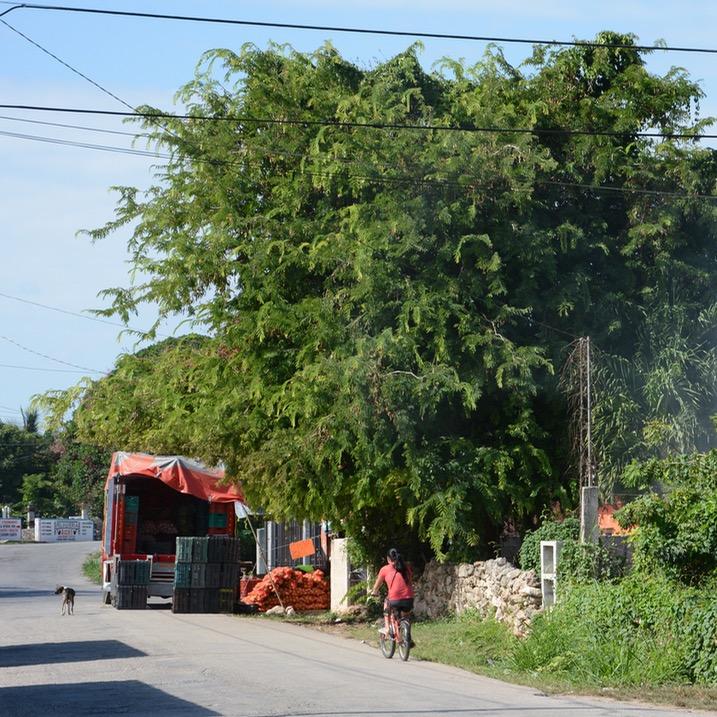 Cancun Mexico valladolid yucatan fruit vegetable shop