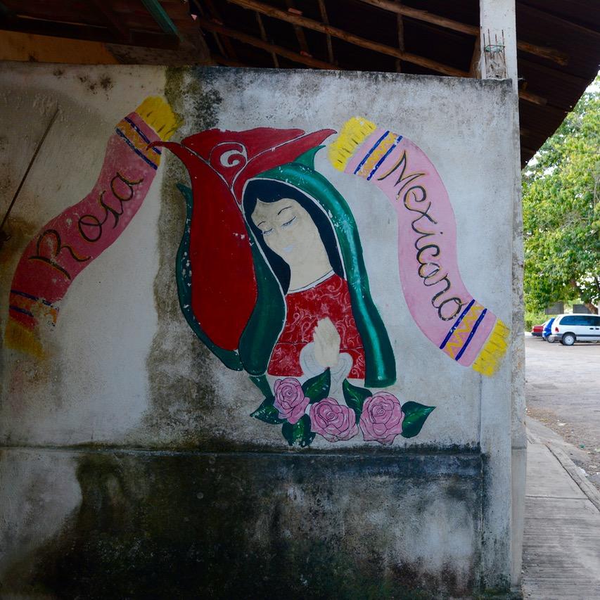 Cancun Mexico valladolid yucatan rosa painting