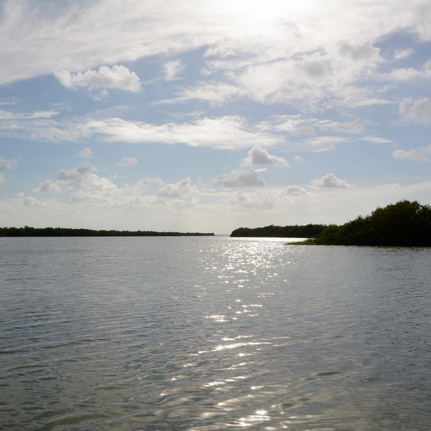 Travel with children kids mexico rio lagartos  islands