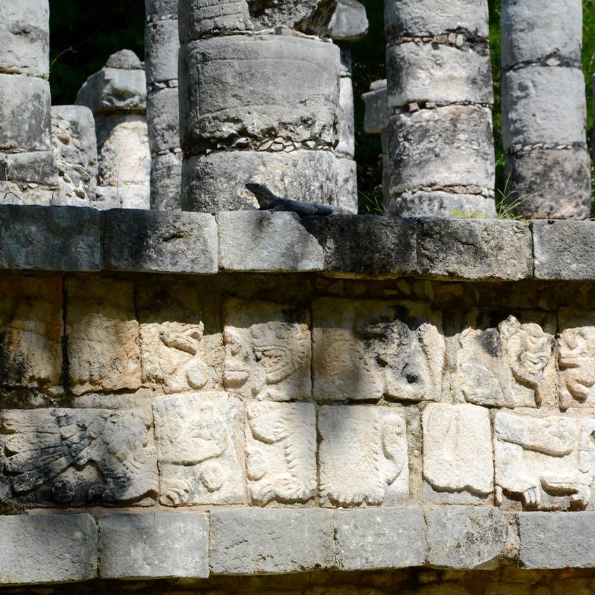 travel with children kids mexico chichen itza thousand columns iguana