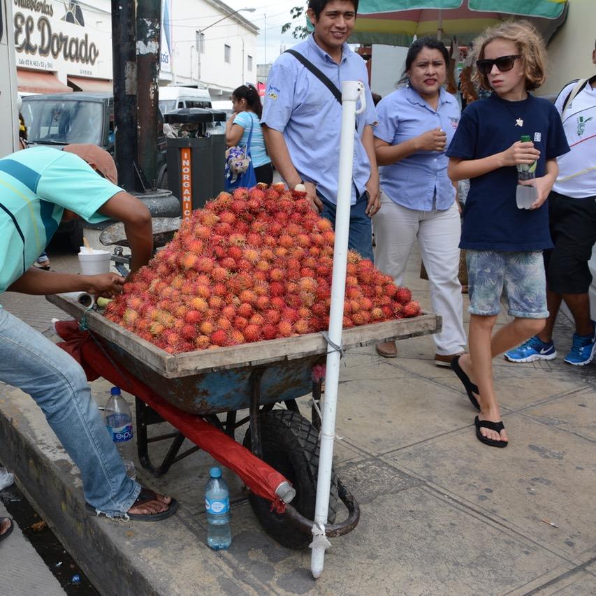 Mexico Merida travel with children kids lychee stall