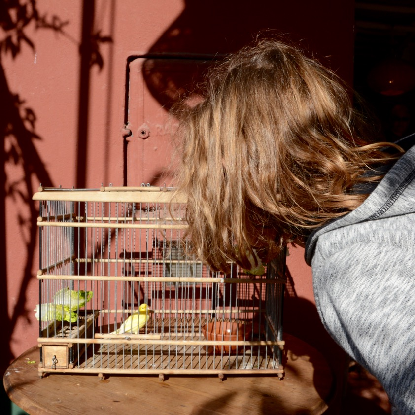travel with children kids marrakech morocco anima garden andre heller