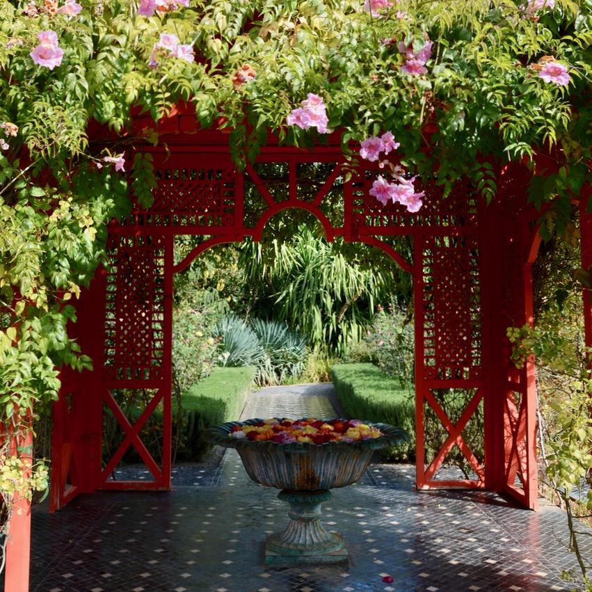 travel with children kids marrakech morocco anima garden andre heller andy warhol rose garden