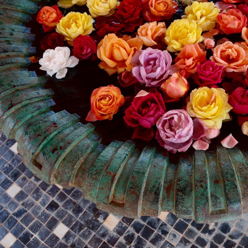 travel with children kids marrakech morocco anima garden andre heller roses