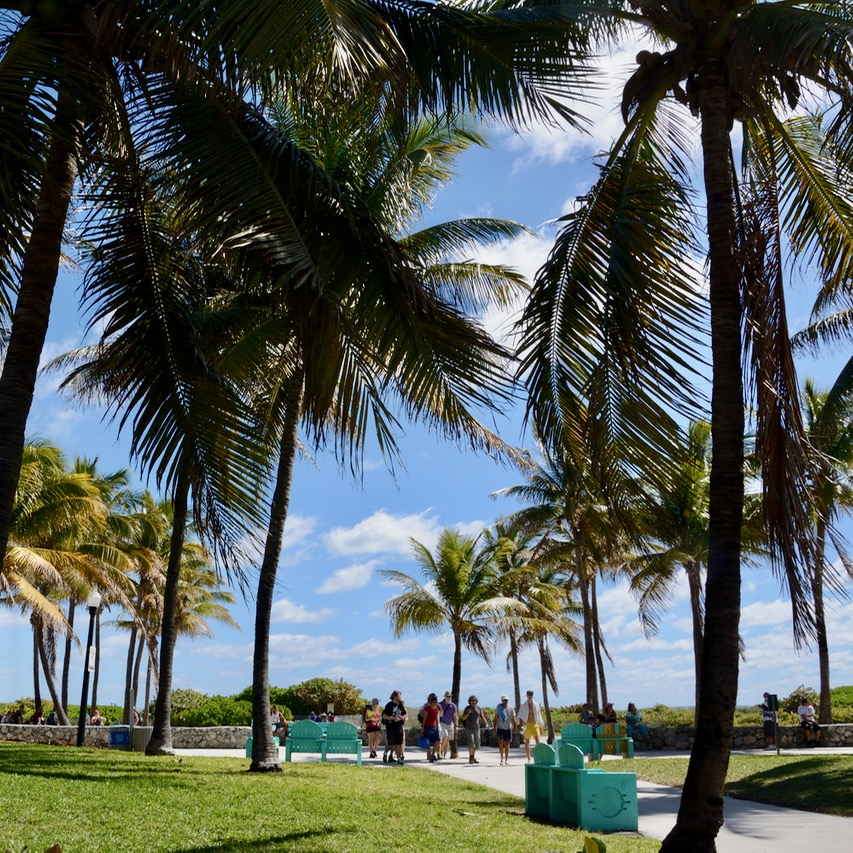 travel with kids children miami south beach mondrian south point park