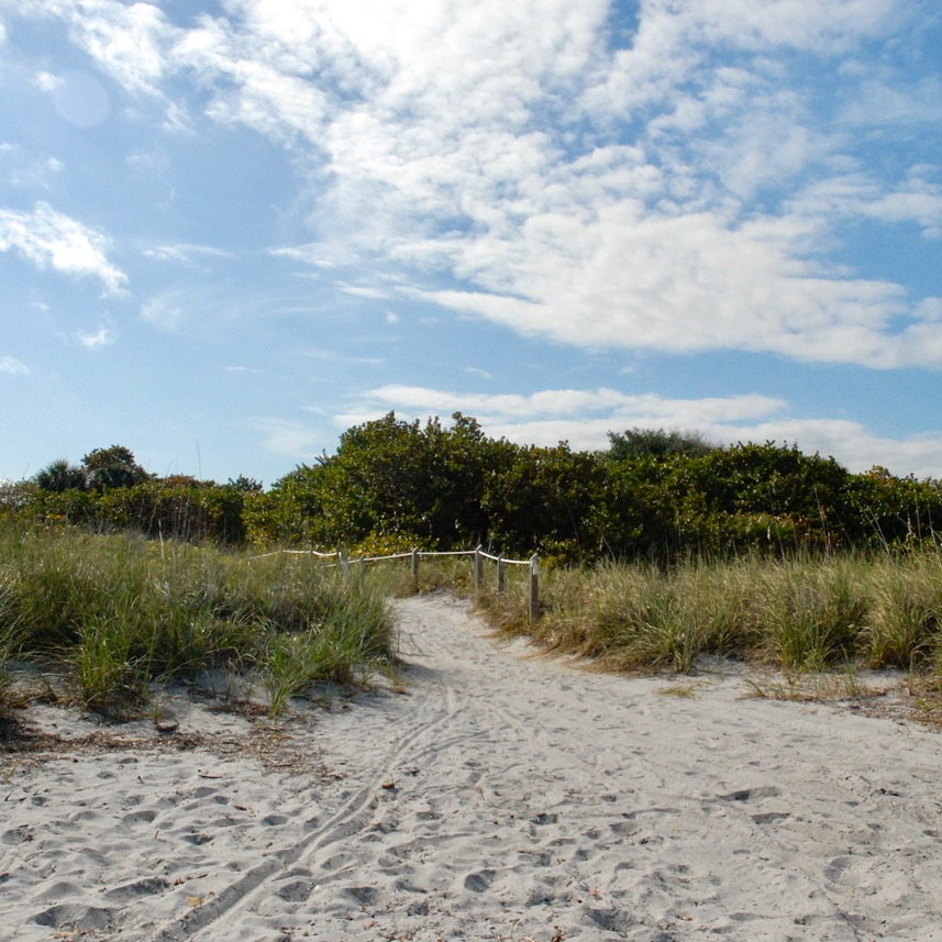 travel with kids children miami usa virginia key beach Bill Baggs cape florida state park dunes