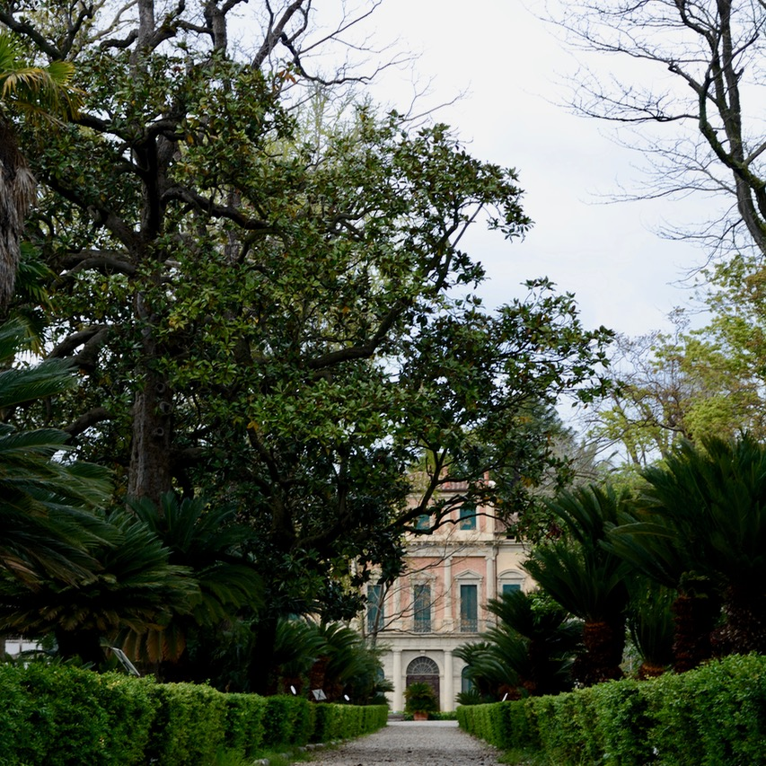 travel with kids children pisa italy botanic garden park