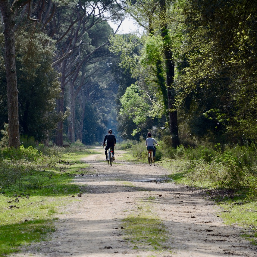 travel with kids children pisa italy nature park Migliarino cycling