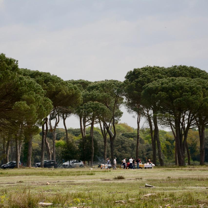 travel with kids children pisa italy nature park Migliarino barbeque