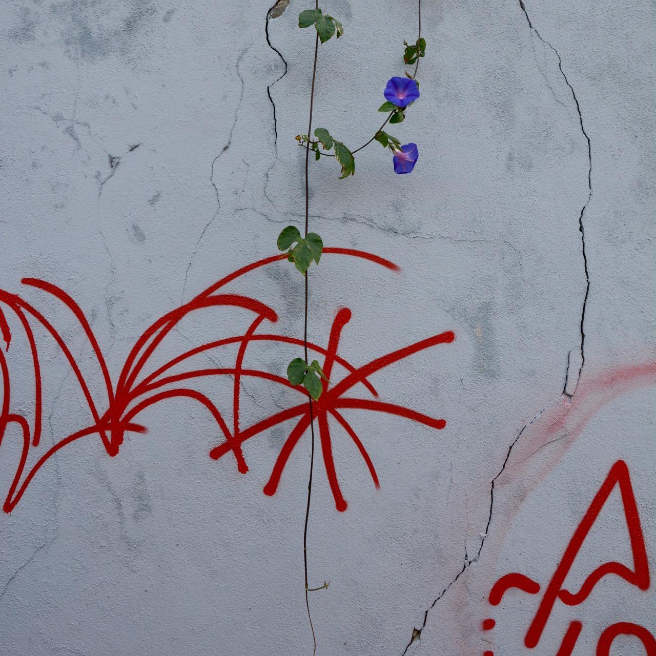 travel with kids children porto portugal graffiti