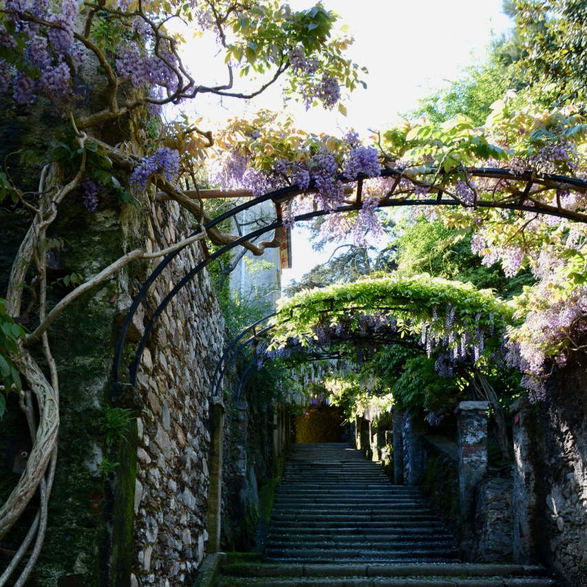travel with kids children isola madre lago maggiore italy garden wisteria