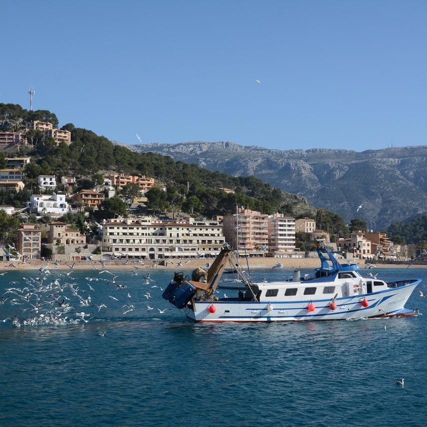 travel with kids children soller mallorca spain port fishing boat