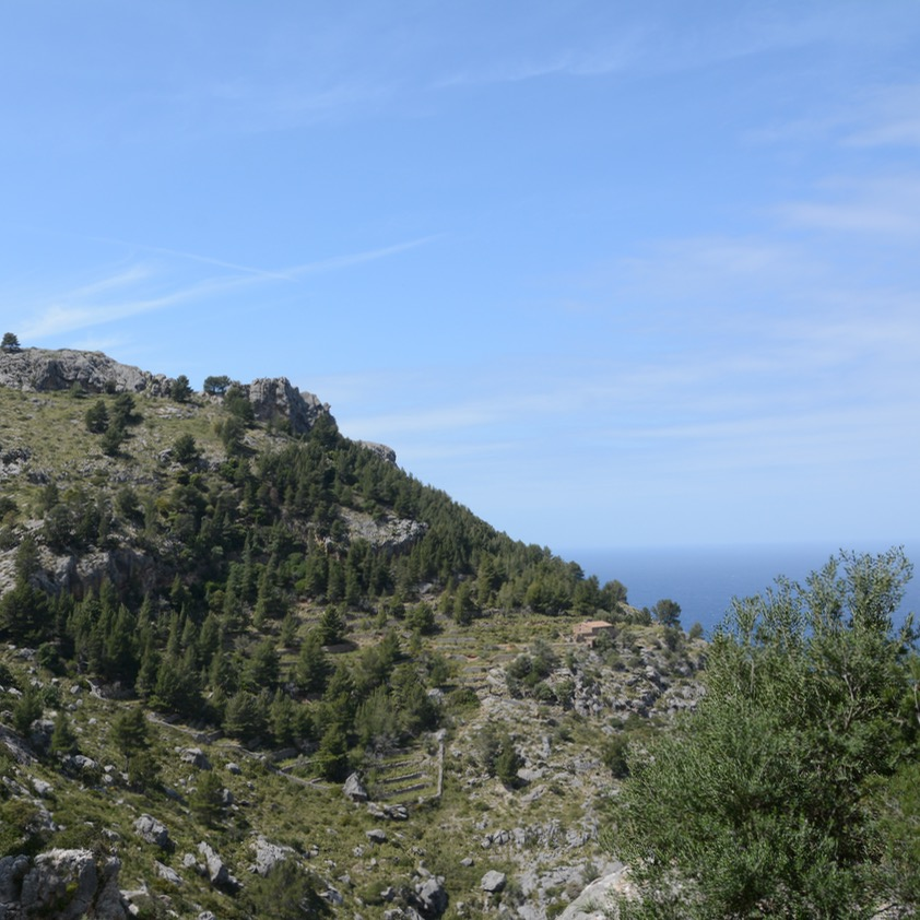 travel with kids children soller mallorca spain hiking cala tuent coast