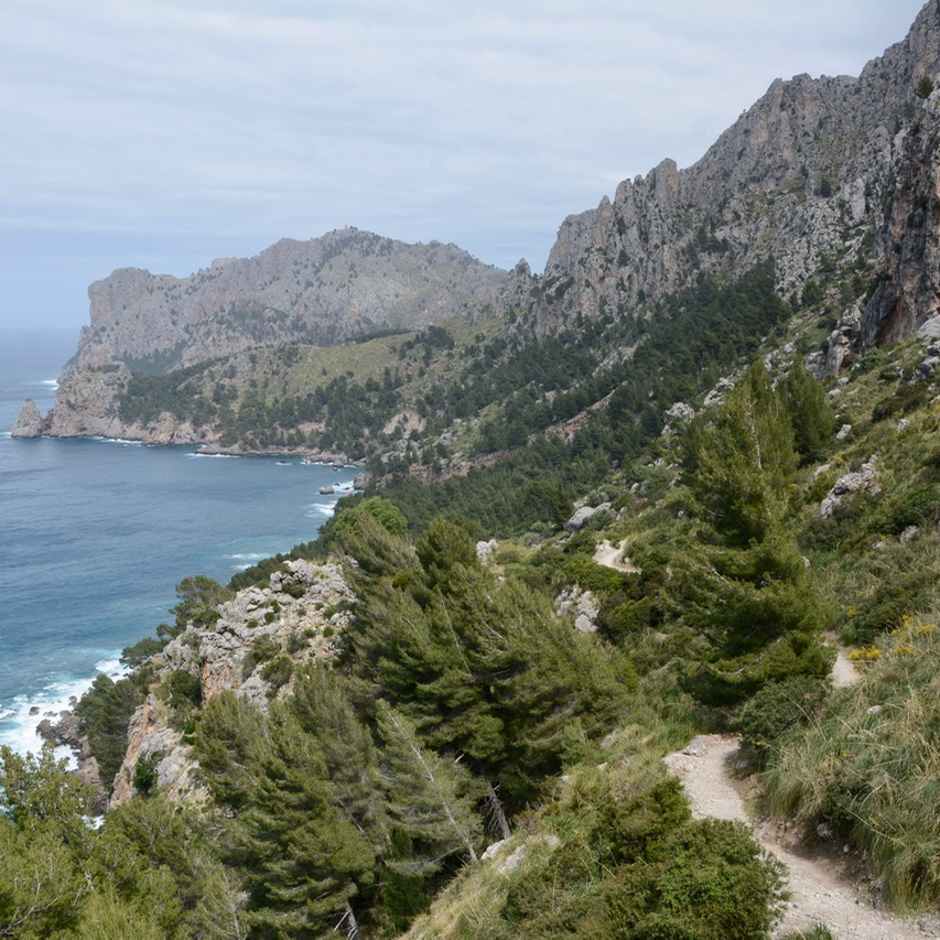 travel with kids children soller mallorca spain hiking cala tuent coastline