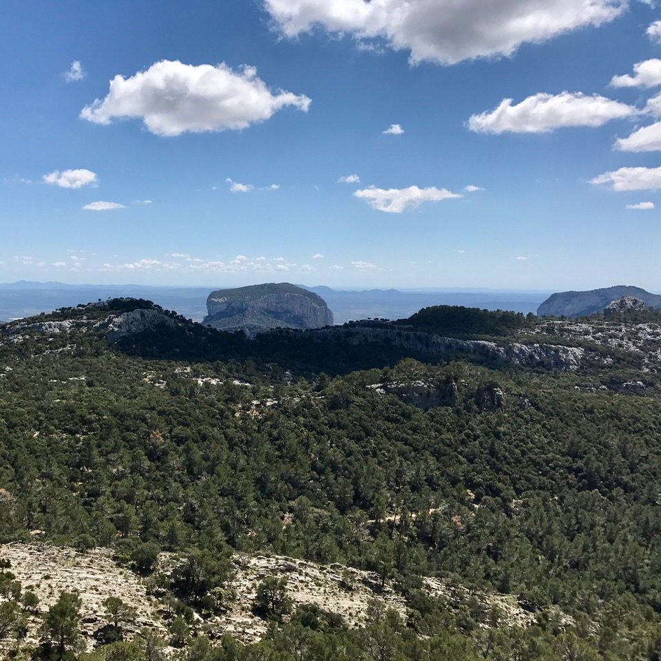 travel with kids children soller mallorca spain three mountain tops hike lofre view alaro